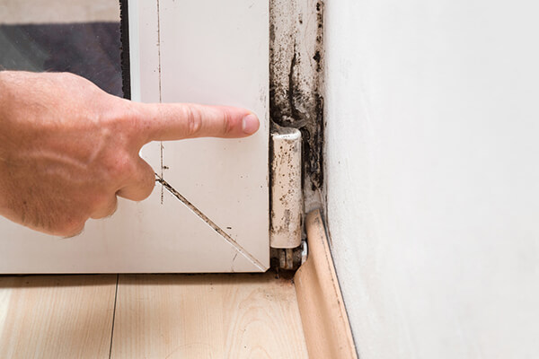 4 Situations Where You Should Really Think About Getting a Mold Inspection…